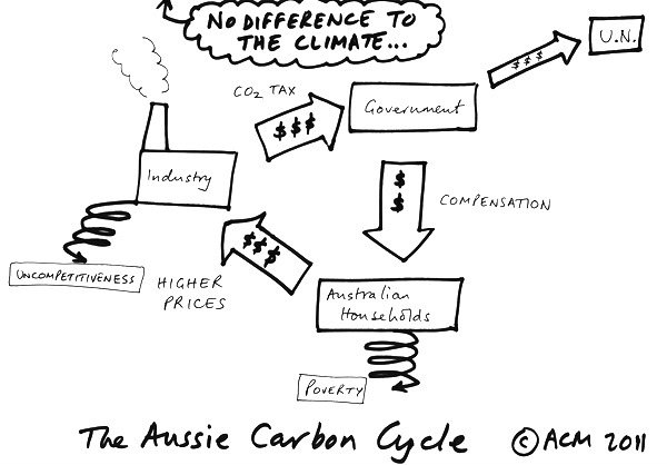 carbon_cycle11